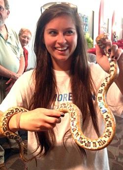 Species Profile: Corn Snake (Elaphe [Pantherophis] guttata) | SREL